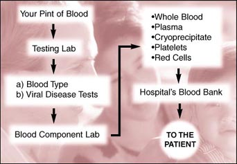 Blood product use flowchart
